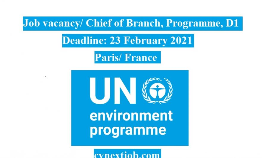 Job vacancy/ Chief of Branch, Programme, D1 at United Nations Environment Programme (UNEP) / (#Paris, #France)