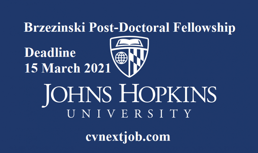 Job vacancy/ Brzezinski Post-Doctoral Fellowship – Foreign Policy Institute at Johns Hopkins University
