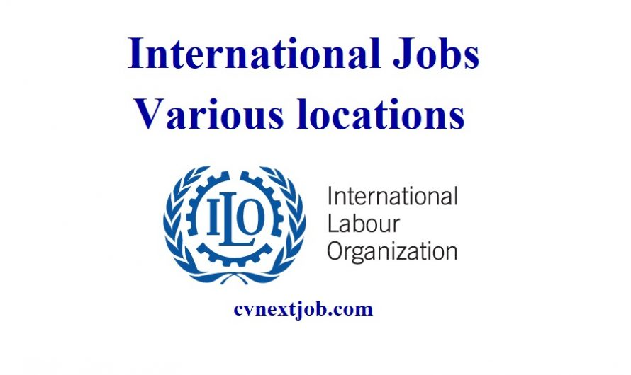 Call for Applications/ Careers at International Labour Organization/ Various locations