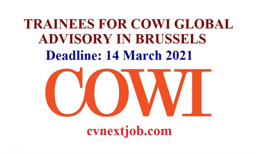 Apply/ TRAINEES FOR COWI GLOBAL ADVISORY IN BRUSSELS