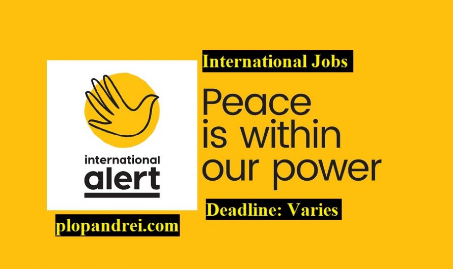 Call for Applications/ Careers at International Alert/ Various locations